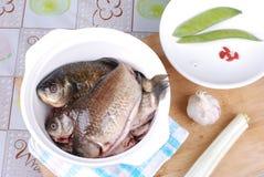 jedzenie surowy Zdjęcia Stock
