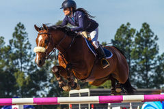 Jeździec dziewczyny konia doskakiwanie Zdjęcie Royalty Free