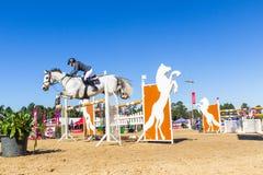 Jeździec dziewczyny konia doskakiwanie Zdjęcia Royalty Free
