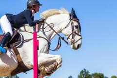 Jeździec dziewczyny konia doskakiwanie Obrazy Royalty Free
