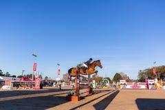 Jeździec Końska Skokowa arena Zdjęcie Stock