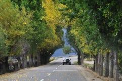 Jeep auf Herbststraße lizenzfreies stockfoto