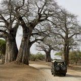 Jeep auf Schotterweg Lizenzfreie Stockfotografie