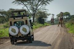 Jeep del blocchetto della giraffa di quattro masai sulla strada Fotografia Stock Libera da Diritti