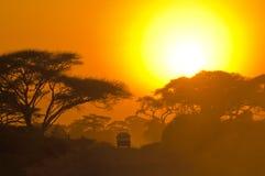 Jeep del safari que conduce a través de sabana Imagenes de archivo