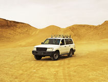 Jeep in desert. White jeep in Sahara desert Royalty Free Stock Photography