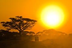 Jeep di safari che guida attraverso la savanna nel tramonto Fotografia Stock