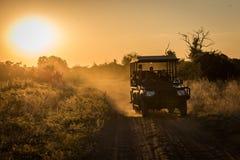 Jeep het drijven onderaan stoffig spoor bij zonsondergang stock afbeeldingen