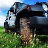 Jeep in het gras Royalty-vrije Stock Foto's