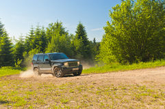 Jeep i skog royaltyfri bild