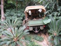 Jeep militar en el bosque Fotografía de archivo