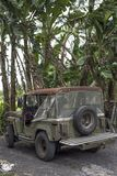 Jeep parked next to banana trees. stock photography