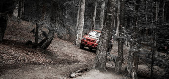 Jeep race in the forest. Having fun in the forest, racing Royalty Free Stock Photography