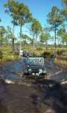 Rally in the muddy waters. A jeep rally in south Florida waters of the everglades royalty free stock images
