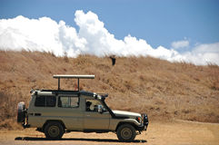 Jeep in the safari. A typical jeep which is used when going to a safari in Africa. Above the jeep you can see a hawk. The photo was taken inside the ngorongoro stock photo