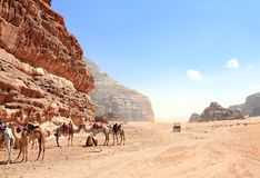 Jeep safari in Wadi Rum desert, Jordan. Camels and tourists in the car ride on off-road on sand among the beautiful rocks stock images