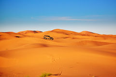 Jeep in sand dunes in the Sahara Desert, Morocco royalty free stock images