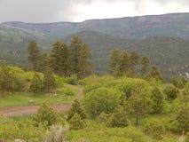 Jeep Trail em Dixie National Forest, Utá fotografia de stock