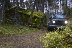 Jeep Wrangler im Herbstwald, Russland Stockfotografie
