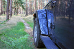 Jeep Wrangler in a pine forest Royalty Free Stock Images