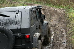 Jeep Wrangler Rubicon. Offroad expedition by jeep Wrangler in the Leningrad region, the Jeep Wrangler is a compact four wheel drive off road and sport utility stock photo