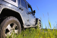 Jeep Wrangler unlimited sahara in the forest, Russia Royalty Free Stock Photos