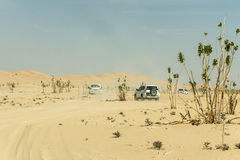 Jeeps traditional Safari Dune Bashing tourists Oman Ubar Desert Rub al Khali 6 stock photography