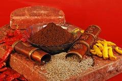 Jeera, индийские специи стоковые фото
