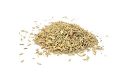 Jeera (Cumin Seeds) Royalty Free Stock Photos