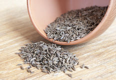 Jeera, cumin. On the table stock photography