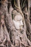 Jefe asombroso de la piedra arenisca Buddha Foto de archivo