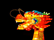 Jefe de un dragón Fotos de archivo