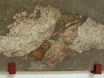 Jefe de un mosaico rústico joven Imagenes de archivo