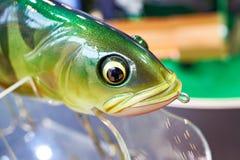 Jefe del cebo de pesca plástico colorido en tienda del deporte foto de archivo libre de regalías