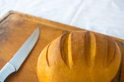 Jefe del queso tradicional del Adygei hecho a mano Fotografía de archivo