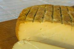 Jefe del queso tradicional del Adygei hecho a mano Imagen de archivo libre de regalías