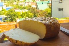 Jefe del queso tradicional del Adygei hecho a mano Imágenes de archivo libres de regalías