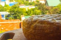 Jefe del queso tradicional del Adygei hecho a mano Foto de archivo
