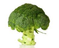 Jefe verde del bróculi en el fondo blanco imágenes de archivo libres de regalías