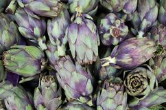 Jefes frescos de las alcachofas de globo en venta en mercado de los granjeros Bio producto para las cocinas vegetales foto de archivo libre de regalías