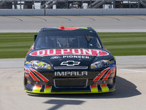 Jeff Gordon Dupont Chevrolet Stock Foto