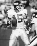 Jeff Hostetler. New York Giants QB Jeff Hostetler, #15.  (Image taken from B&W negative Royalty Free Stock Photo