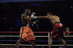 Jeff Left Hook Lacy immagine stock