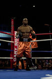 Jeff Left Hook Lacy. Professional Boxer Jeff Left Hook Lacy Royalty Free Stock Photos