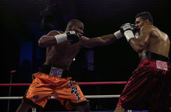 Jeff Left Hook Lacy. Professional Boxer Jeff Left Hook Lacy Royalty Free Stock Image