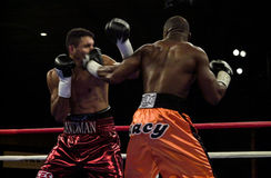 Jeff Left Hook Lacy. Professional Boxer Jeff Left Hook Lacy lands a left hook on the face of Scott Pemberton Royalty Free Stock Image
