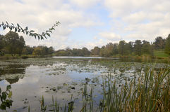 Jefferson湖在圣路易斯 免版税图库摄影