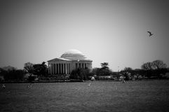 Jefferson Memorial Royalty Free Stock Image