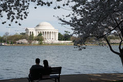 Jefferson Memorial during the Cherry Blossom Festival Stock Photography