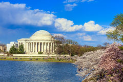 The Jefferson Memorial during the Cherry Blossom Festival. Washi Royalty Free Stock Photography